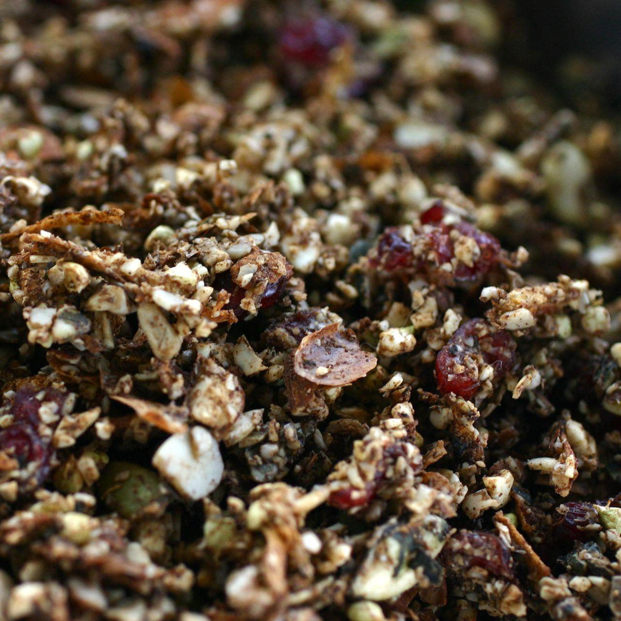 Best Raw Granola • The Healthy Eating Site