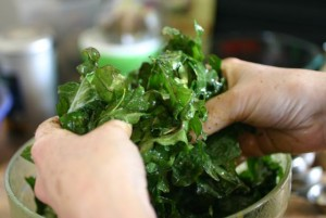 Making Kale Chips: Massaging the kale