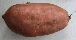 This is a sweet potato (a.k.a. kumara)